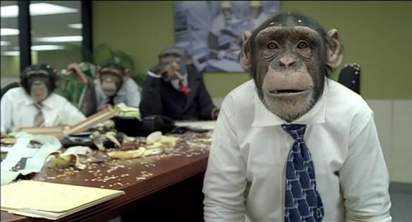 trained monkeys